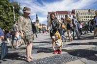 Festival v ulicích rozproudí centrum