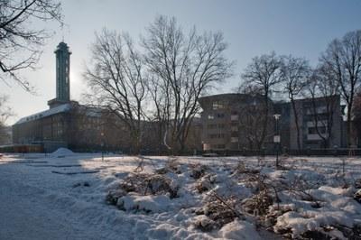 Město Ostrava právě spustilo příjem žádostí o okamžitou jednorázovou finanční podporu ve výši 20 tisíc korun