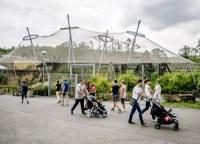 Do zoo přiveze návštěvníky vlak