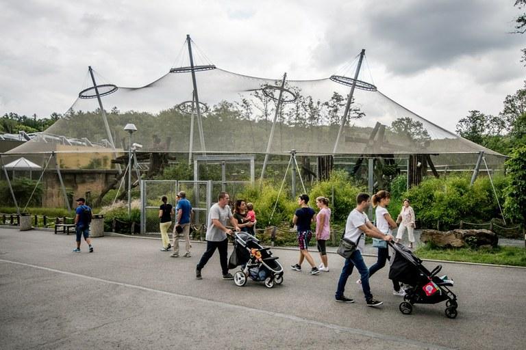 Ostrava prověřuje, zda by mohl návštěvníky do zoo vozit vlak
