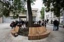Součástí piazzetty je také lavička u stromu, který v letních měsících nabízí příjemný stín.