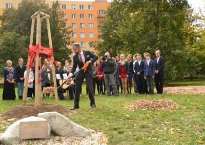 Před gymnáziem byl zasazen strom Olgy Havlové