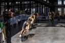 Cyklisté vyjíždějí z Trojhalí, kde byl start.