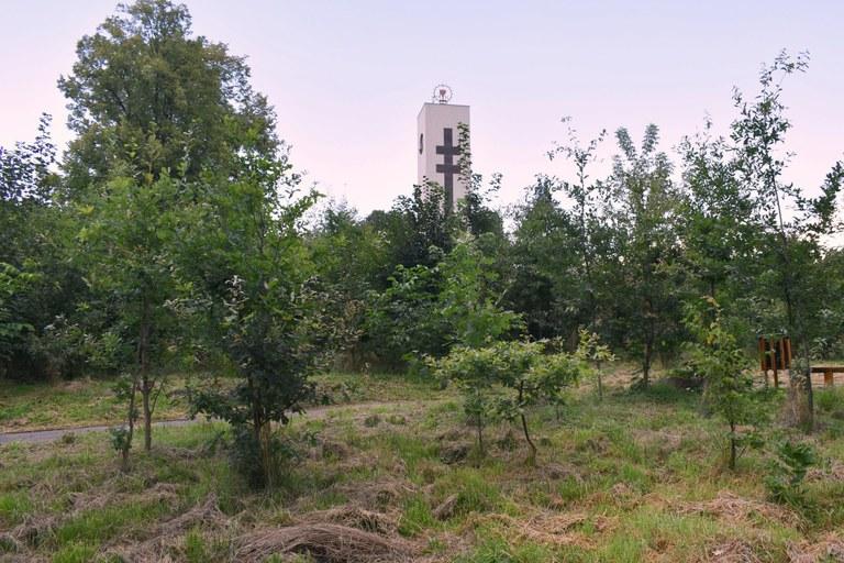 Svinovský park čekají úpravy, sloužit bude také školákům ke vzdělání a osvětě