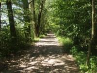 Trasa A - Vyškovice