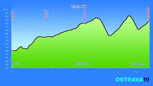 profil trasa W