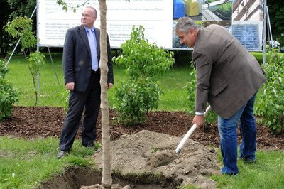Thousands of new trees to be planted in Ostrava